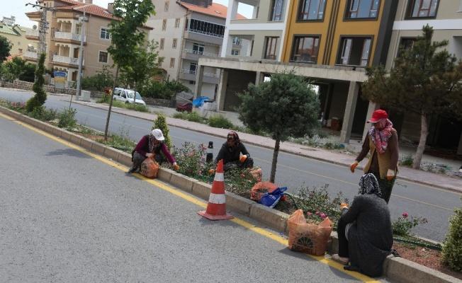 Develi'de İş-Kur çalışanları iş başı yaptı