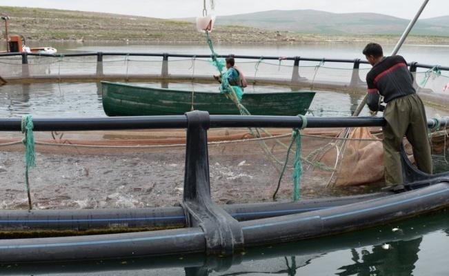 Kayseri Yamula barajından dünyaya ihracat