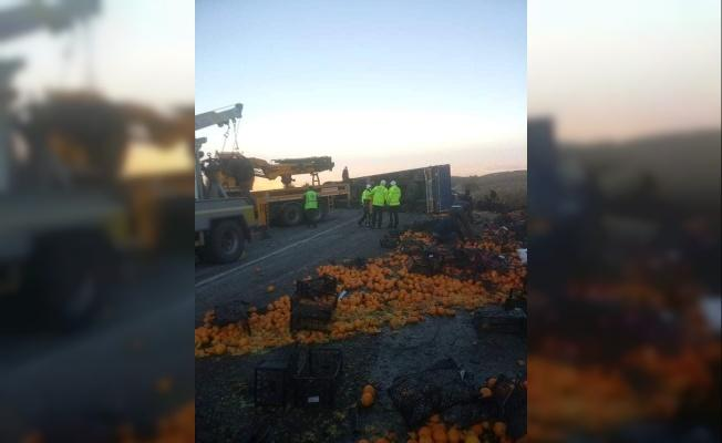 Mandalina yüklü kamyon devrildi, tonlarca mandalina yola saçıldı.