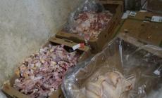 Merdiven altı tavuk parçalayan 4 işletmeye 111 bin TL para cezası!